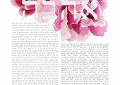 The-Painted-Ketubah_0010