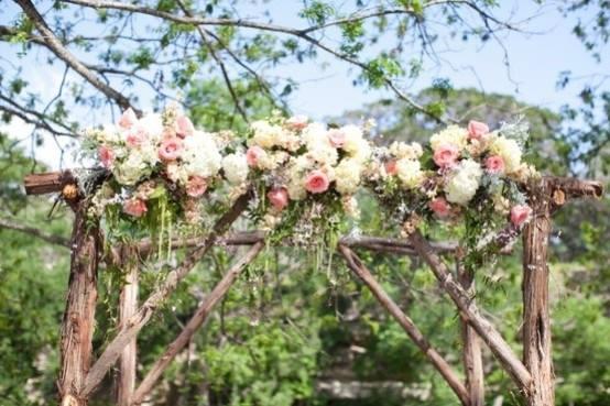 Amaranthus chuppah