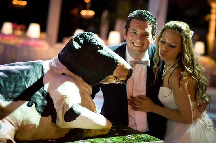 cow wedding cake