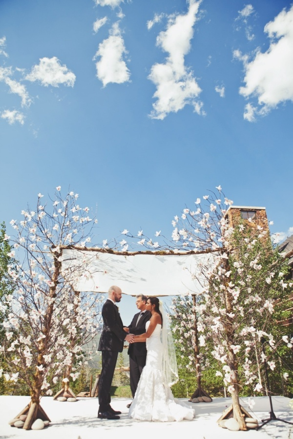 Flowering branches for a chuppah. Beautiful metaphor