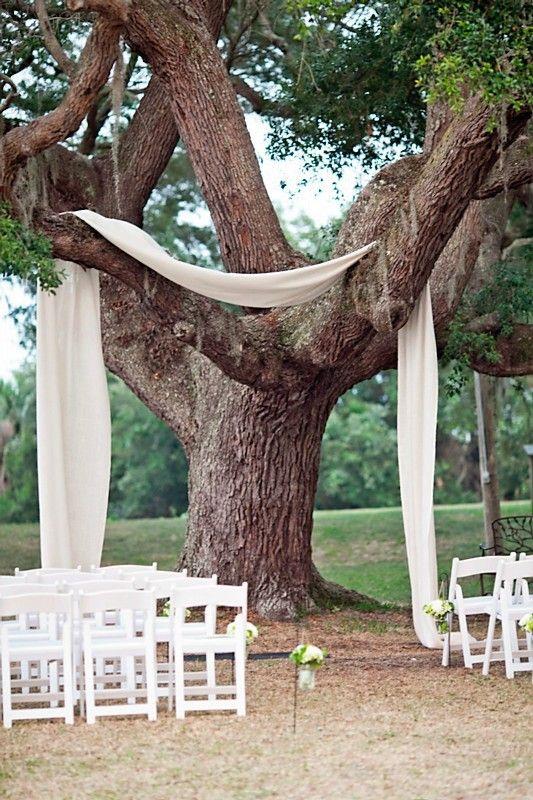 laidback tree chuppah