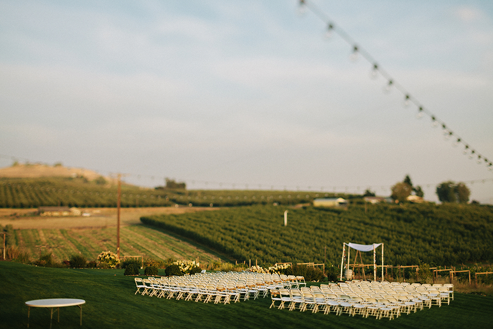 Vineyard wedding Washington 91