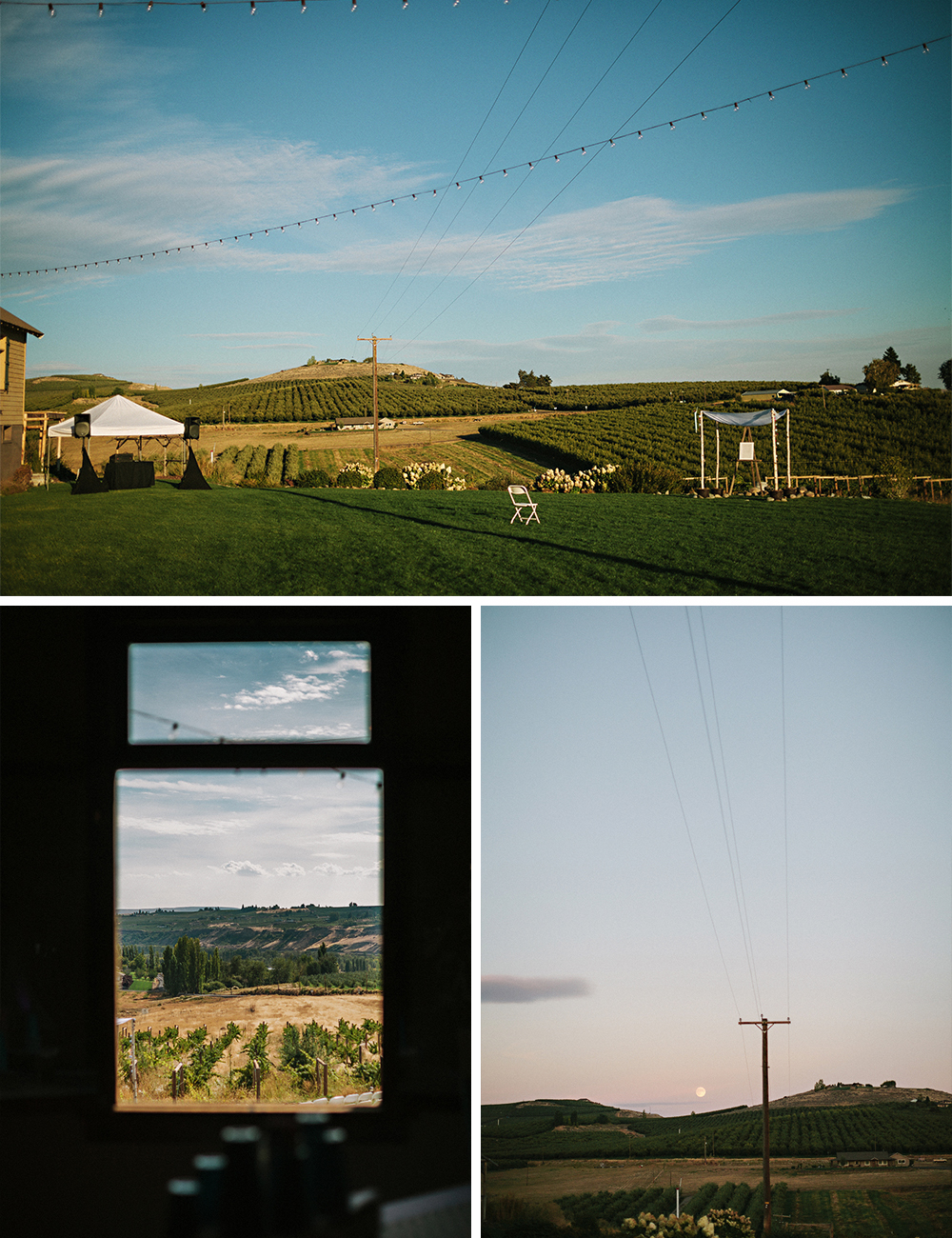 Vineyard wedding Washington B