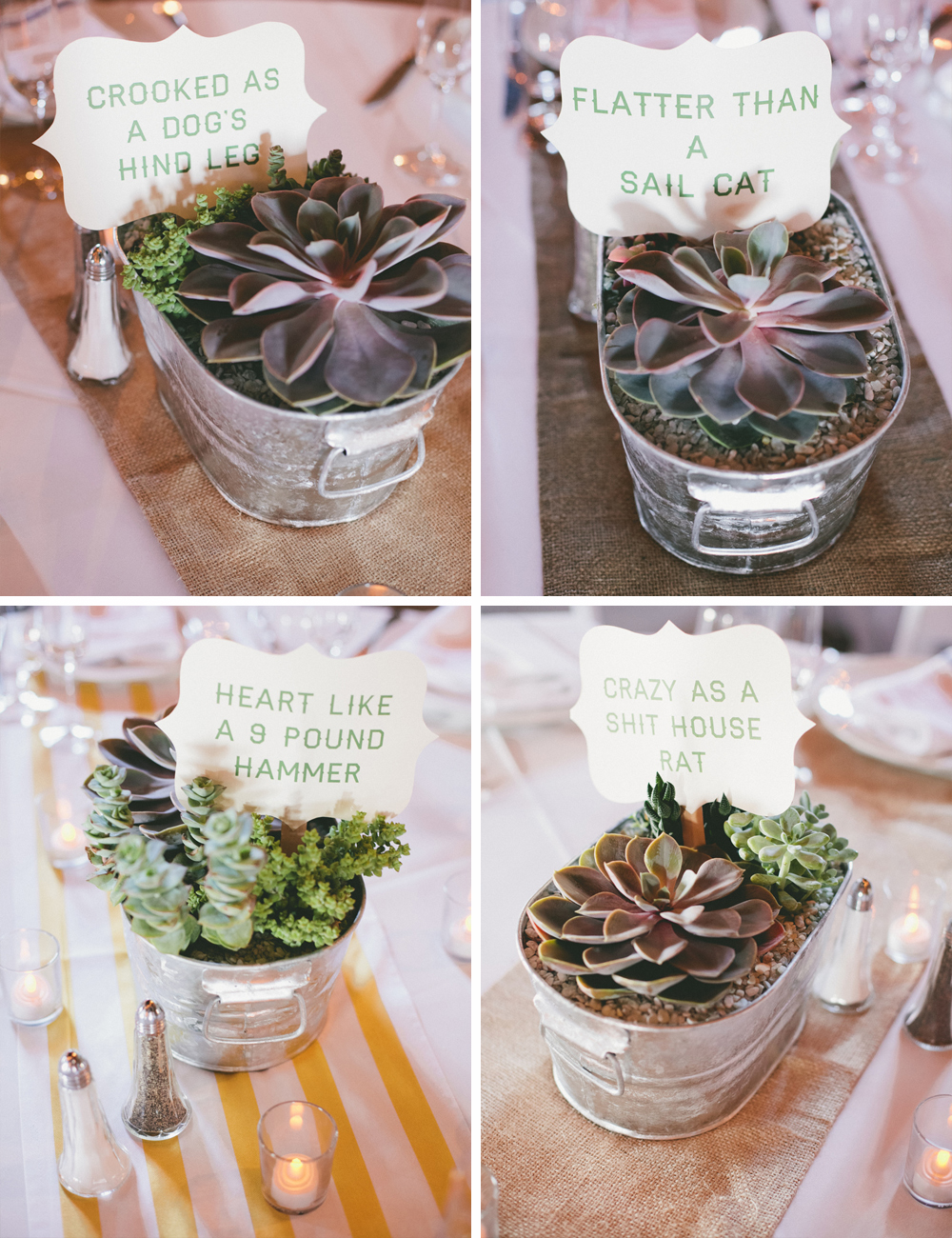Succulent table centres
