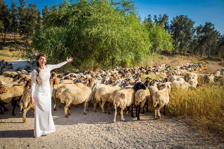 Jewish wedding Ein Hemed Judea Mountains Israel_0015