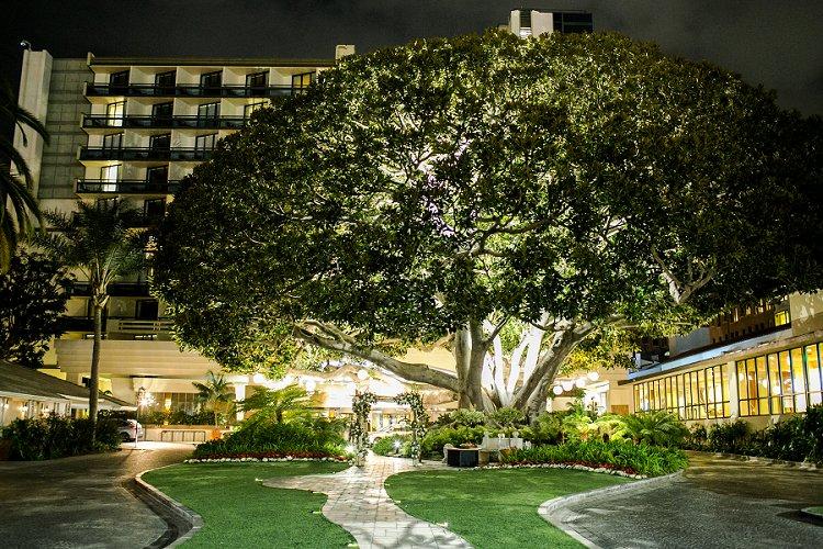 Jewish WeddingThe Fairmont Miramar Santa Monica California USA_0078