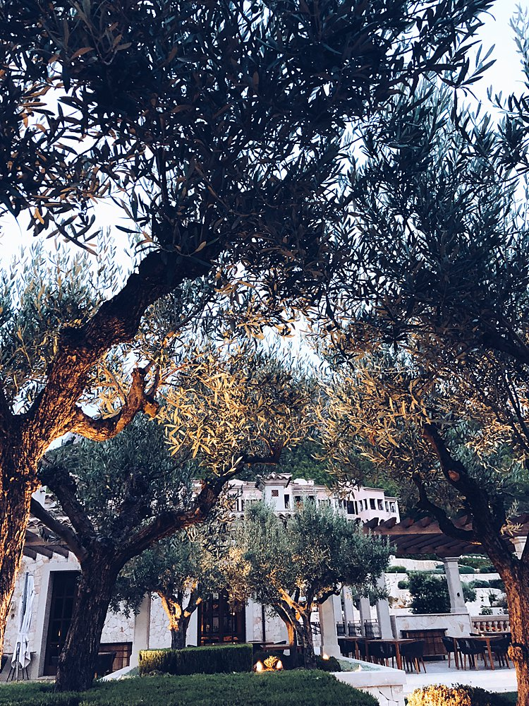 Jewish-wedding-Park-Hyatt-Mallorca-Spain_0003