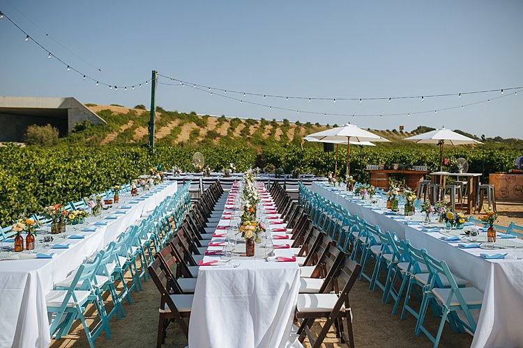 Jewish wedding vineyard south of Tel Aviv, Israel_0014